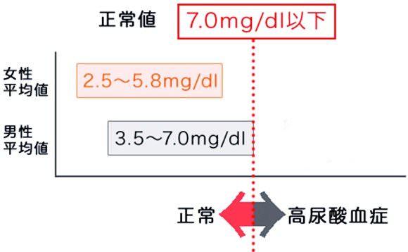 男女別尿酸値基準値